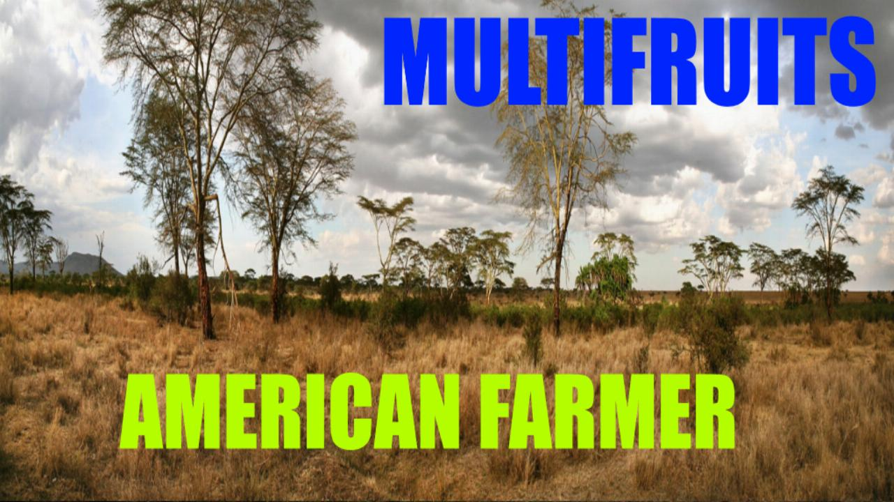 American Farmer Multifruits