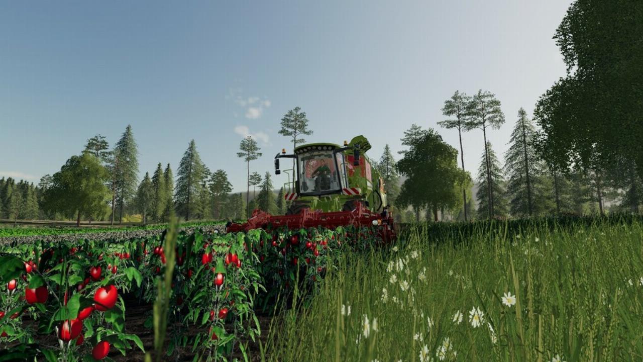 LS19 Old Kiwi Farm v1.0.0.0